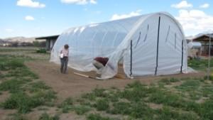 Farm Greenhouse under big wind
